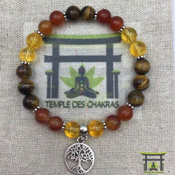 bracelet-personnalise-oeil-de-tigre-citrine-cornaline-arbre-de-vie